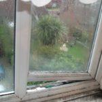 Плесень на окнах: что делать?